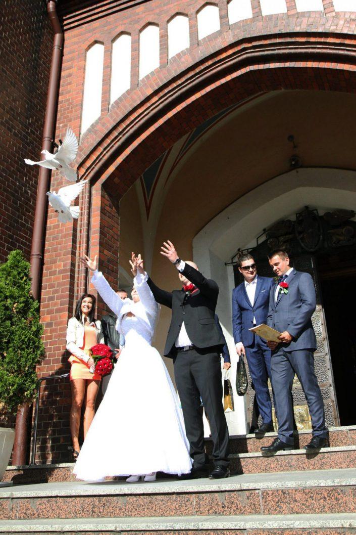 Gołąbki ślubne